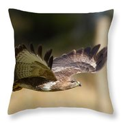 Buzzard In Flight Throw Pillow