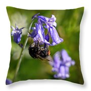 Buzzy Bee On Bluebells Throw Pillow