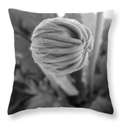 Bw Bud Throw Pillow