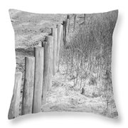 Bw Fence Line Throw Pillow