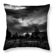 Bw IIi Throw Pillow