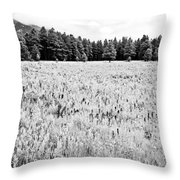 Bw Meadow Throw Pillow