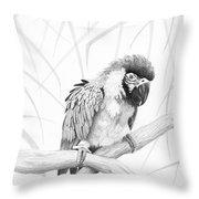 Bw Parrot Throw Pillow