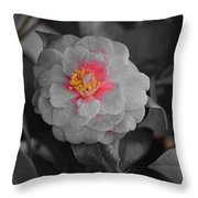 Bw Pink Rose Throw Pillow