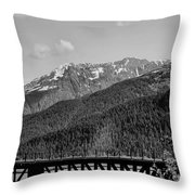 Bw Rail Alaska  Throw Pillow