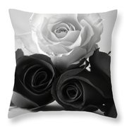 Bw Roses #021 Throw Pillow