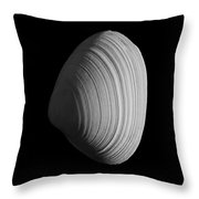 Bw13 Throw Pillow