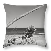 Bw8 Throw Pillow