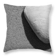 Bw9 Throw Pillow