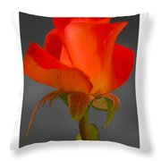 By Any Other Name Throw Pillow