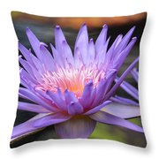 By The Hand Of The Master Throw Pillow