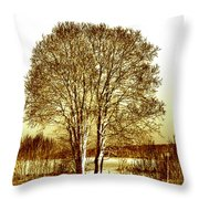 By The Lake Throw Pillow