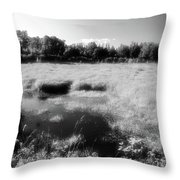By The Road In Summer Two  Throw Pillow