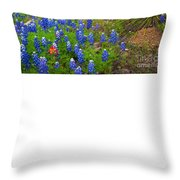 Hill Country Yucca Throw Pillow