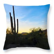 By The Vekol Wash Throw Pillow