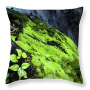 By The Waterfall Throw Pillow
