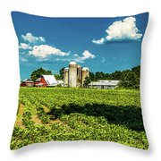 Bygone Days Throw Pillow