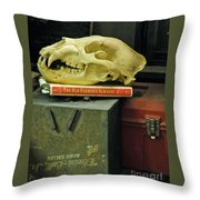 Bygones Throw Pillow