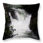 Bz Falls 1 Throw Pillow