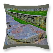 C And O Canal Lock Throw Pillow