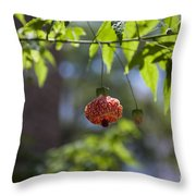 Red Papery Covering Over Its Fruit Throw Pillow