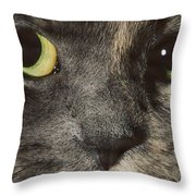 C2 Quisha Throw Pillow