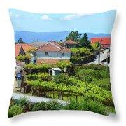 Cabana Maior  Throw Pillow