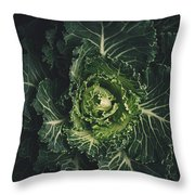 Cabbage  Throw Pillow