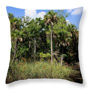 Cabbage Palms Along The Cotee River Throw Pillow