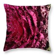 Cabbage Rainbow  Throw Pillow