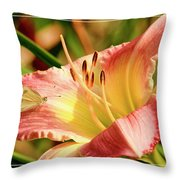 Cabbage White Butterfly On Day Lily Throw Pillow