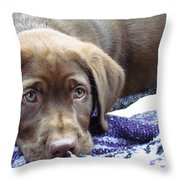 Cabella Throw Pillow