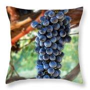 Cabernet Sauvignon Throw Pillow