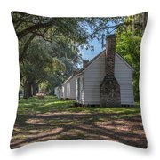 Incredible Story Of Transformation Throw Pillow
