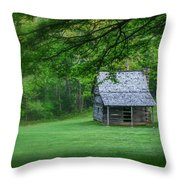 Cabin On The Blue Ridge Parkway - 1 Throw Pillow