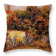 Cabin With Aloe Plants Throw Pillow