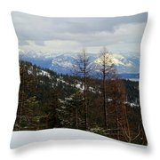 Cabinet View Throw Pillow