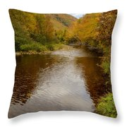 Cabot Trail Autumn 2015 Throw Pillow