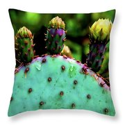 Cacti And Friends Throw Pillow