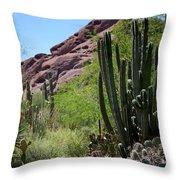 Cacti Garden Throw Pillow