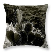 Cacti On Molokai Throw Pillow