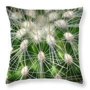Cactus 1 Throw Pillow