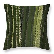 Cactus Abstract Throw Pillow