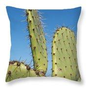 Cactus Against Blue Sky Throw Pillow