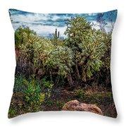 Cactus And Bird Throw Pillow