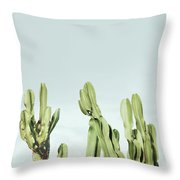 Cactus And Sky Vintage Throw Pillow