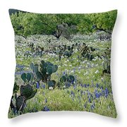 Cactus And Willow-wildflowers Of Texas Throw Pillow