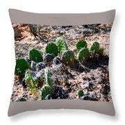 Cactus, Arches National Park Throw Pillow