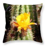 Cactus Bloom 033114a Throw Pillow