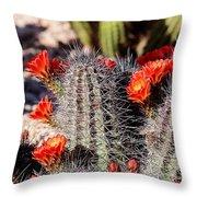 Cactus Bloom 033114f Throw Pillow